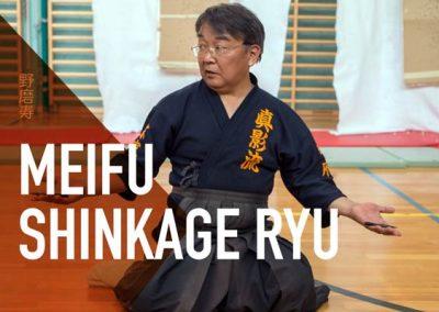 Meifu Shinkage Ryu